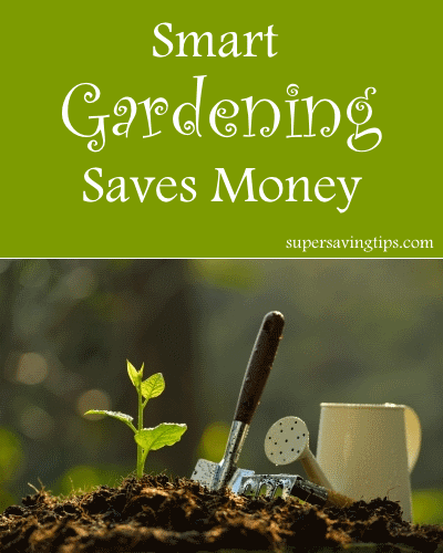 Smart Gardening Saves Money