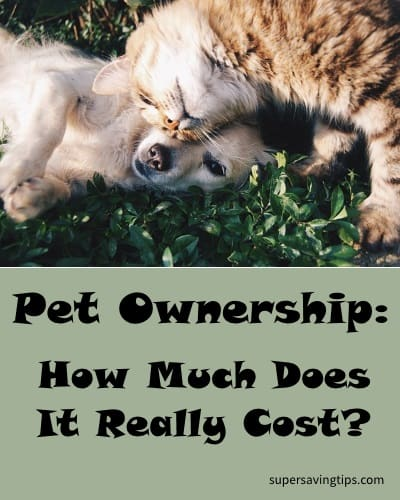 Pet Ownership: How Much Does It Really Cost?